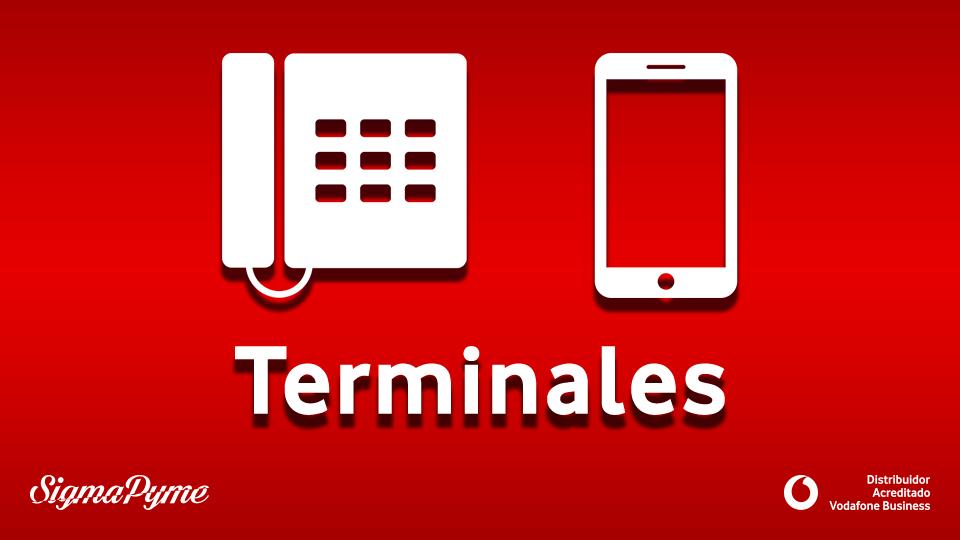Terminales_y_Accesorios